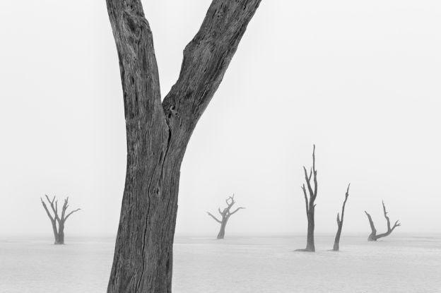 Namib-Naukluft National Park, Namibia - Marsel van Oosten/www.tpoty.com