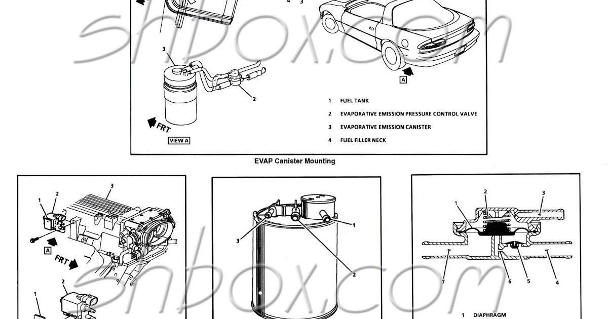 2000 Chevy S10 Fuel Line Diagram
