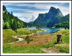 Lakeside Beauty
