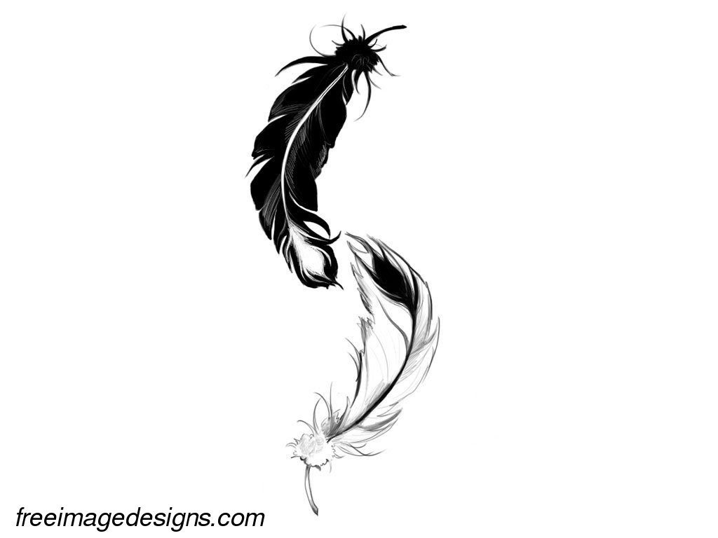 Feathers Free Image Tattoo Design Download Free Image Tattoo Designs