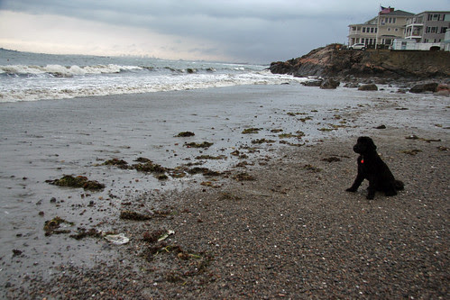 winter beach 010