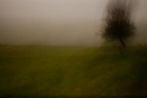 oare marshes #7 by chrisfriel