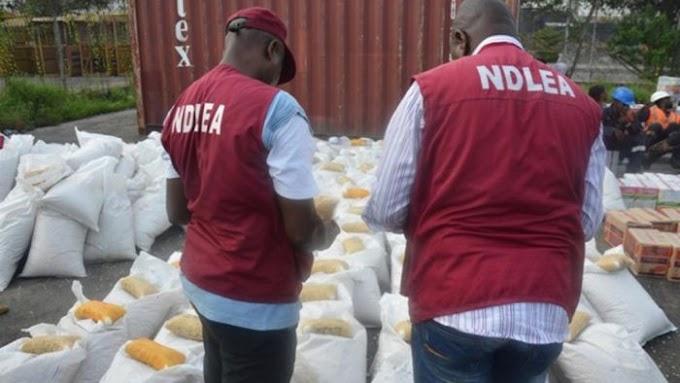 NEWS: NDLEA Captures 90 Suspected Drugs Dealers In Edo