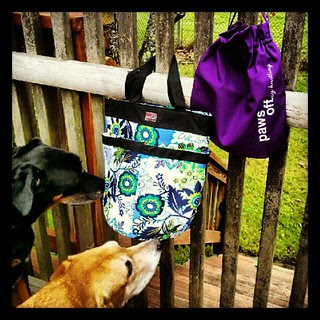 Look what just arrived for #review I'm in #love already!  #knit #knitting #bag #knittingbag #dellaq #dogs #knitstagram #dogstagram #craftsupplies