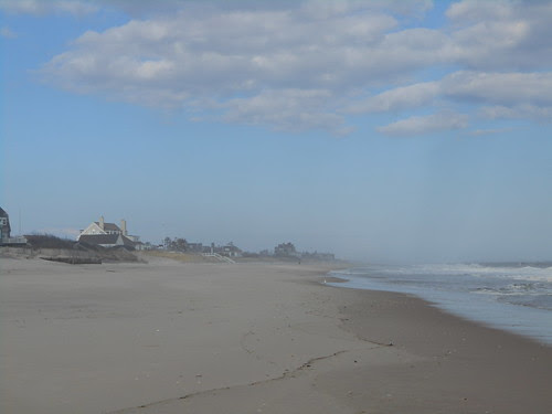 the beach (4)
