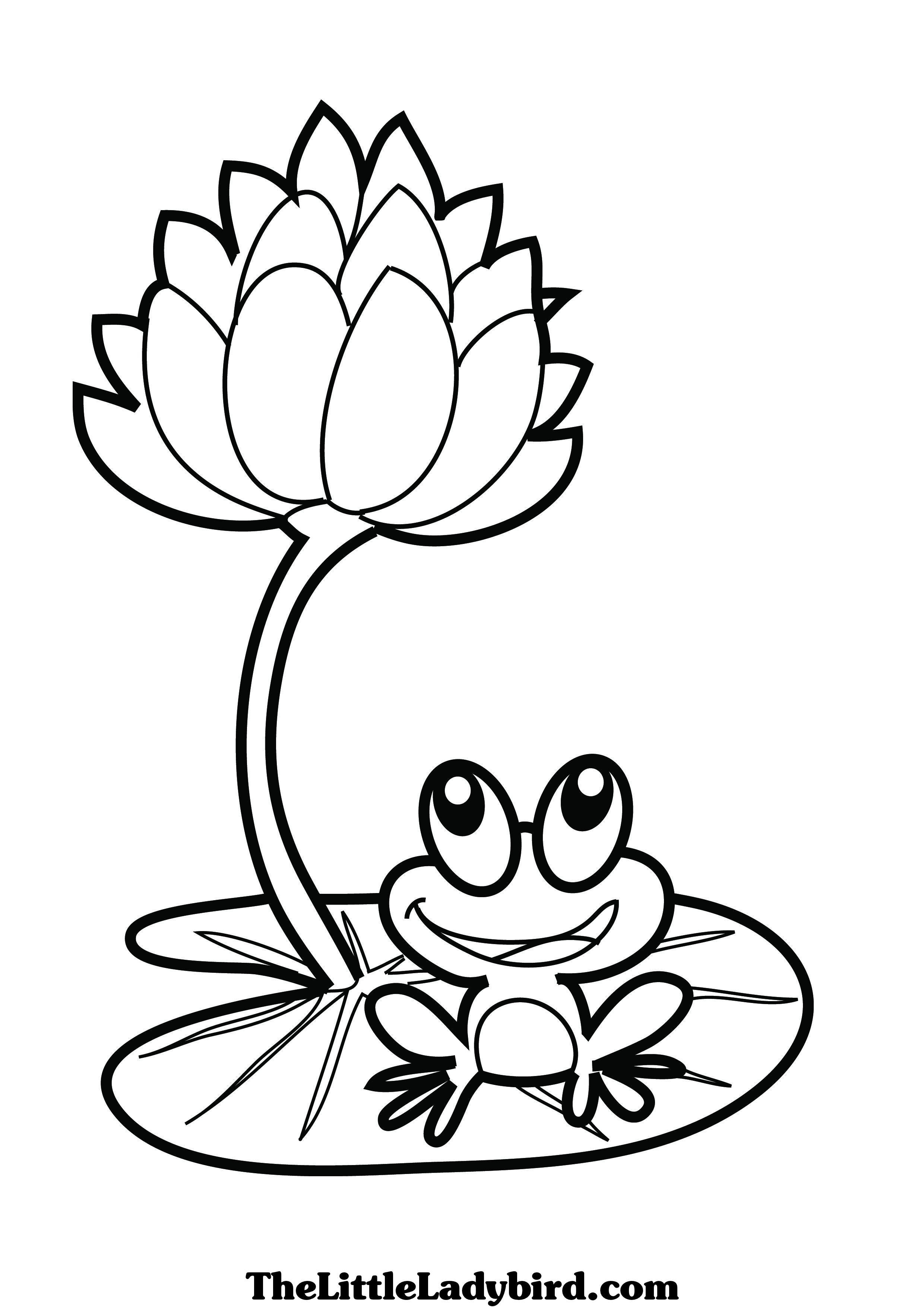 dessin  colorier de a grenouille sitting on a lotus leaf dessins  colorier the