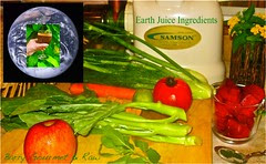 One-Planet-Earth-Juice, Smoothies, Juice, Anti-aging, Prolong Life, Juice Recipes, Good Life, Healthy, Body