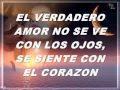 Frases De Amor Bonitas Imagenes