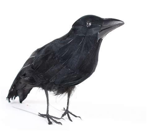 Standing Artificial Crow   Birds & Butterflies   Basic