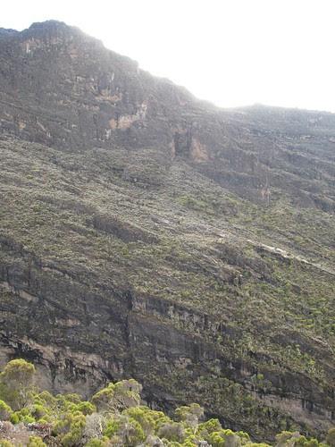 The Breach Wall