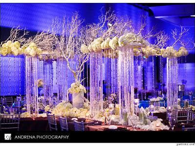 Cinal and Taju's Fabulous Reception Decor   Paperblog