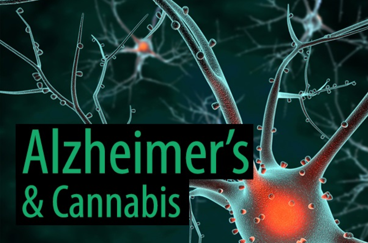 Image result for Scientists Believe Cannabis Could Help Cure Alzheimer's Disease If It Were Rescheduled