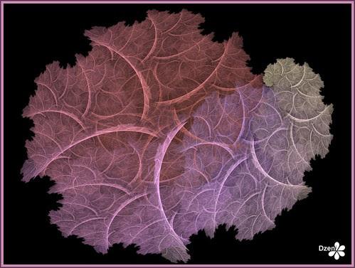 Fragile Leaf