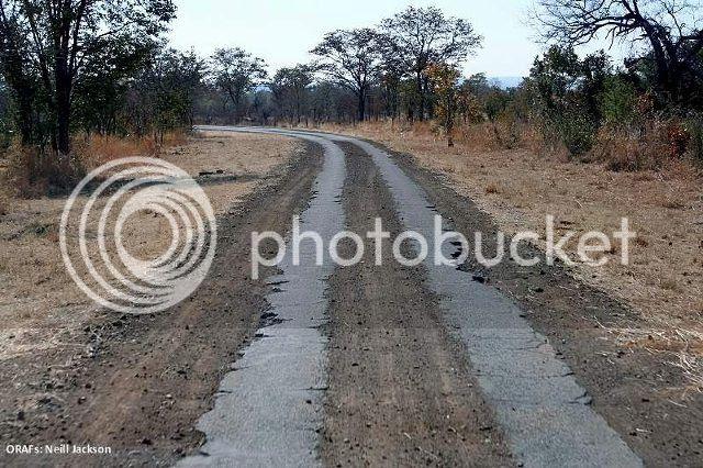 Strip Roads9, Strip roads