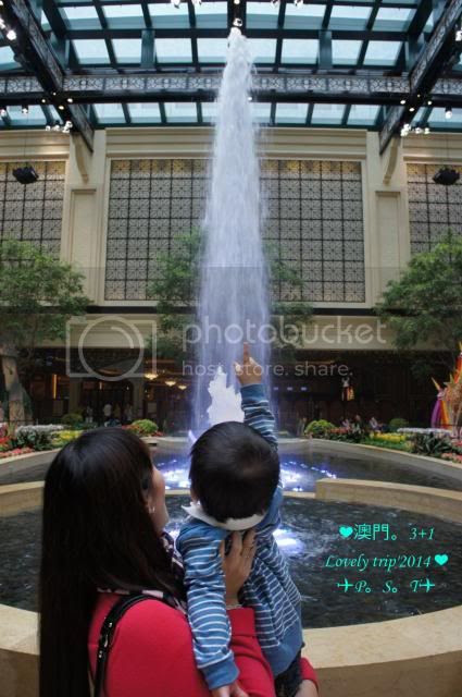 photo 11_zpsed4888cc.jpg