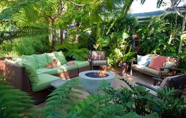 Tropical Garden   www.