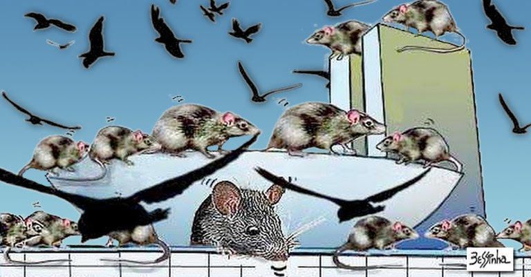 bessinha ratos.jpg