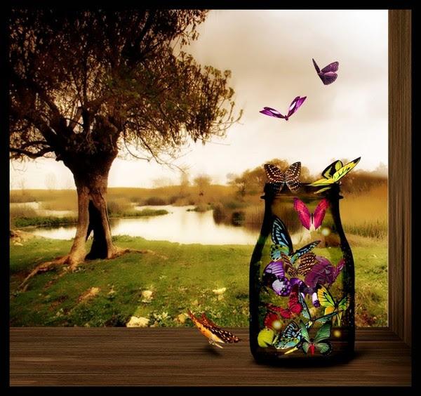 """˜*•.  ♥ ˜*•. """"Butterfly's ˜*•. ♥  ˜*•."""