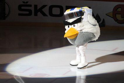 Hockey Bird, Hockey Bird