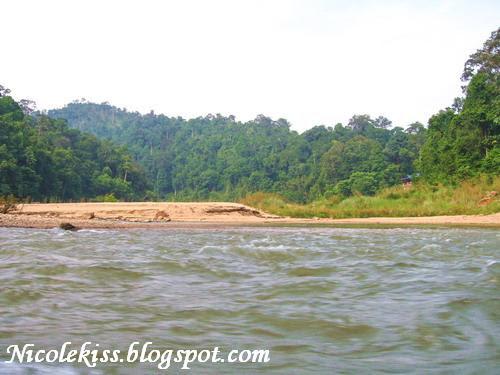 tmn negara river