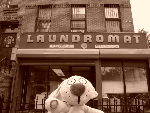 Knuffle Bunny Returns to the Laundromat