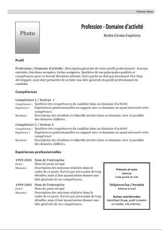 32 Free Cv Format Quebec Download Docx Pdf