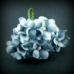 guimauve bleu pale
