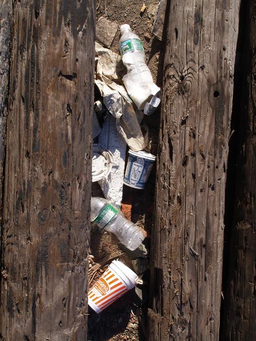 trash between logs