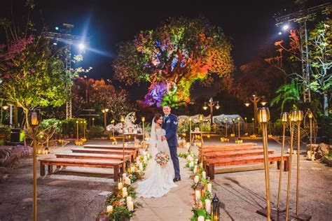 Tree of Life Weddings at Disney?s Animal Kingdom Will Soon