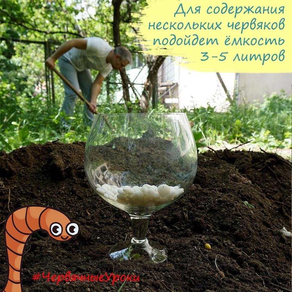 Емкость для содержания дождевых червей, червятник