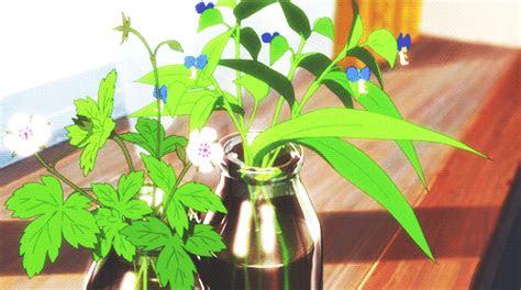 pretty plants aesthetic anime pinterest flower boys