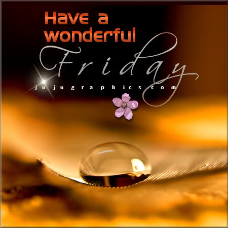 Have A Wonderful Friday 5 Graphics Quotes Comments Images