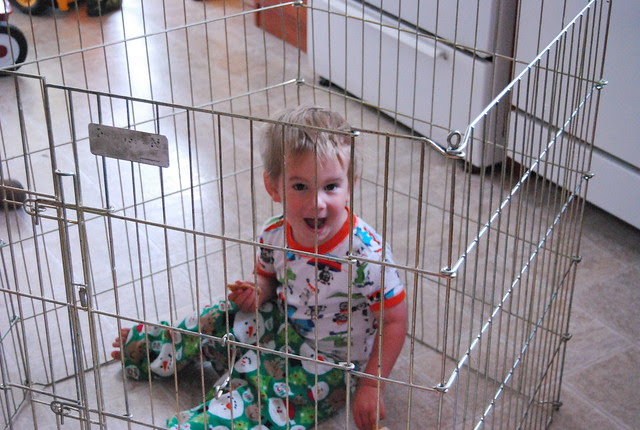 S in a cage