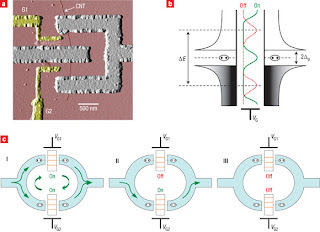 Superconducting quantum interference device, carbon nanotube SQUID