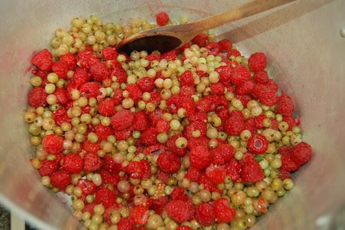 raspberry white currant jam June 11 1