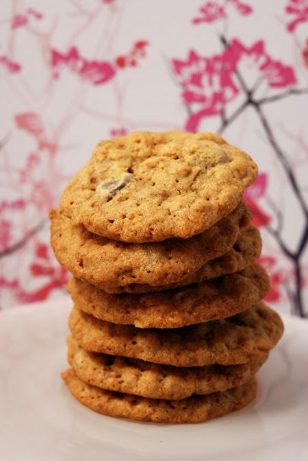 chocolate pecan cookies© by Haalo