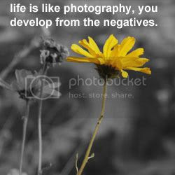 life quote Pictures, Images and Photos