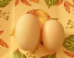 eggthreeinch