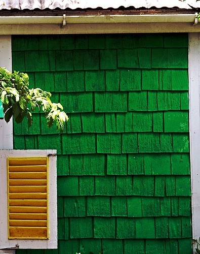 Green Shingles