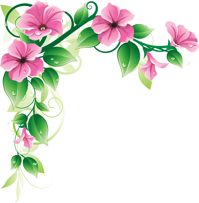 Flowers Borders Png Transparent Flowers Borders Png Images Pluspng