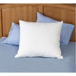 Euro Square Down Pillows | Overstock.com: Buy Down Online