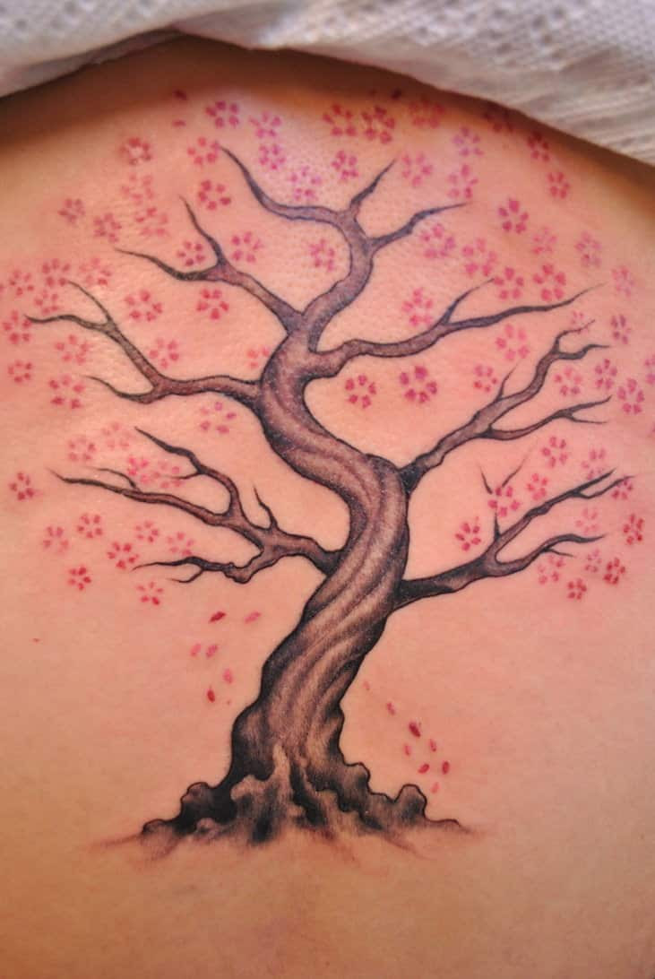Cherry Blossom Tattoos For Men Ideas And Inspiration For Guys