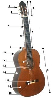 Acoustic guitar parts.png