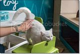photo Catcafe-20_zpsefa8dcb5.jpg