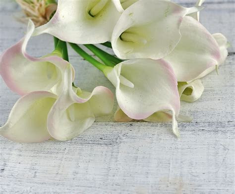 Natural Touch Hand Tied Calla Blush & Cream Lily Wedding