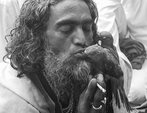 Kissing Women Is Injurious To Health.. Kissing Parrots Is Safer by firoze shakir photographerno1