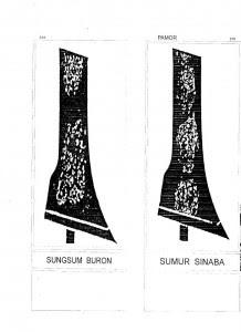 sumsum buron griyokulo