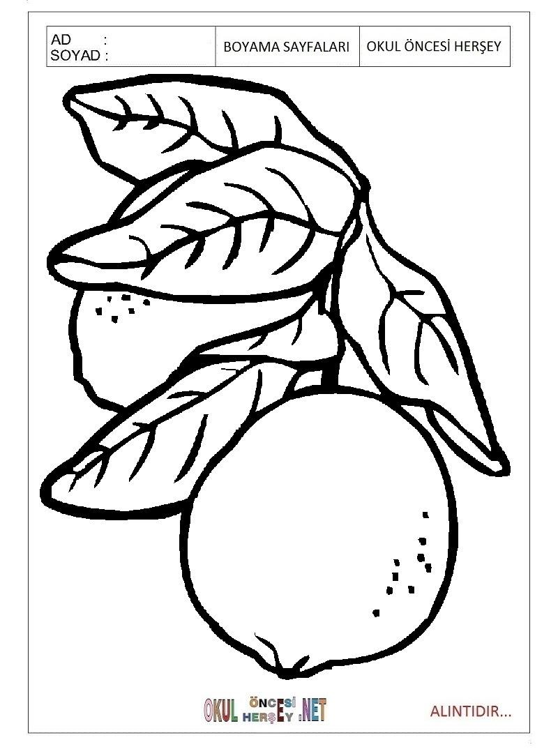 Limon Boyama Sayfaları