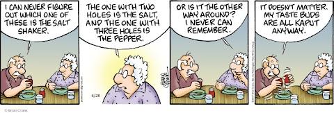 Salt And Pepper Comic Strip