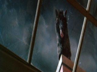 photo The-Beast-Must-Die-werewolf_zpsspn0qvax.jpg